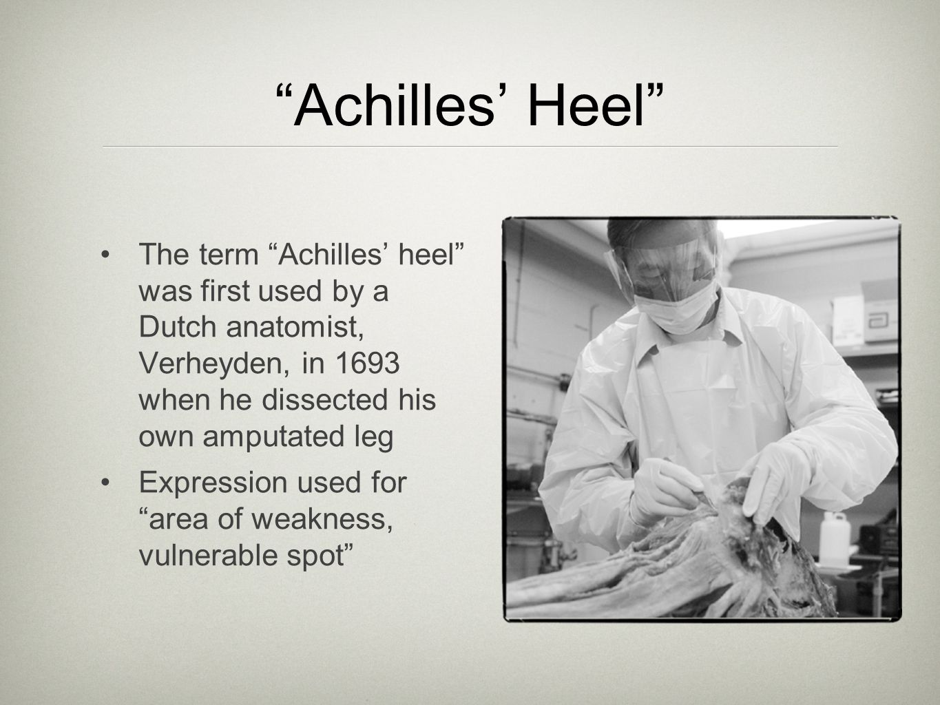 Achilles' Heel The term Achilles' heel was first used by a Dutch anatomist, Verheyden, in 1693 when he dissected his own amputated leg.