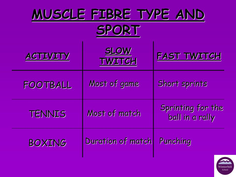 MUSCLE FIBRE TYPE AND SPORT