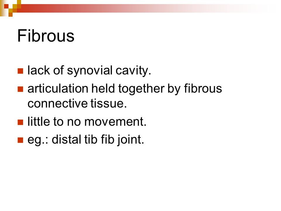 Fibrous lack of synovial cavity.