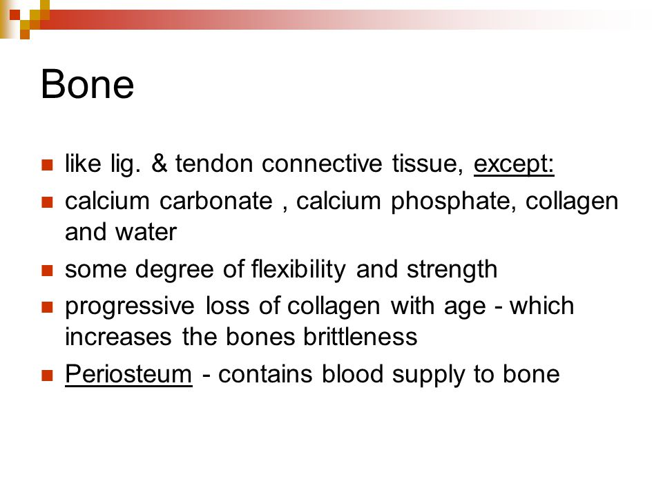 Bone like lig. & tendon connective tissue, except: