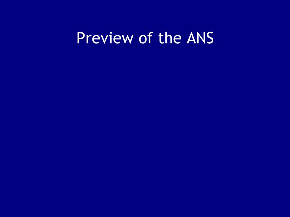 Preview of the ANS
