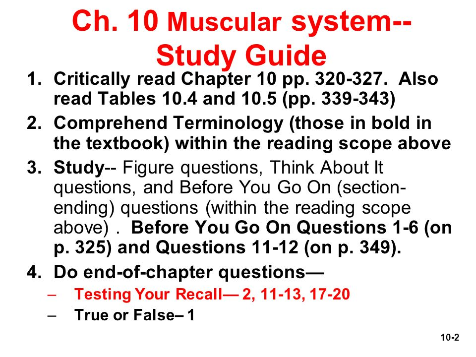 Muscular System Study Guide & Notes Questions ... - Quizlet