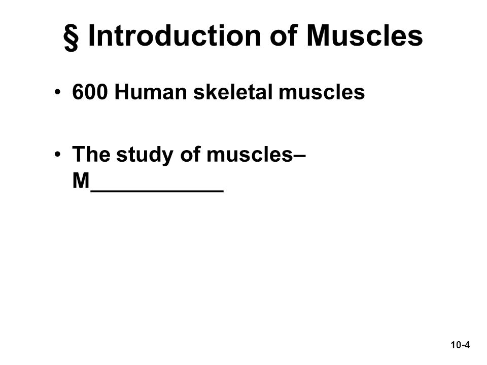 § Introduction of Muscles