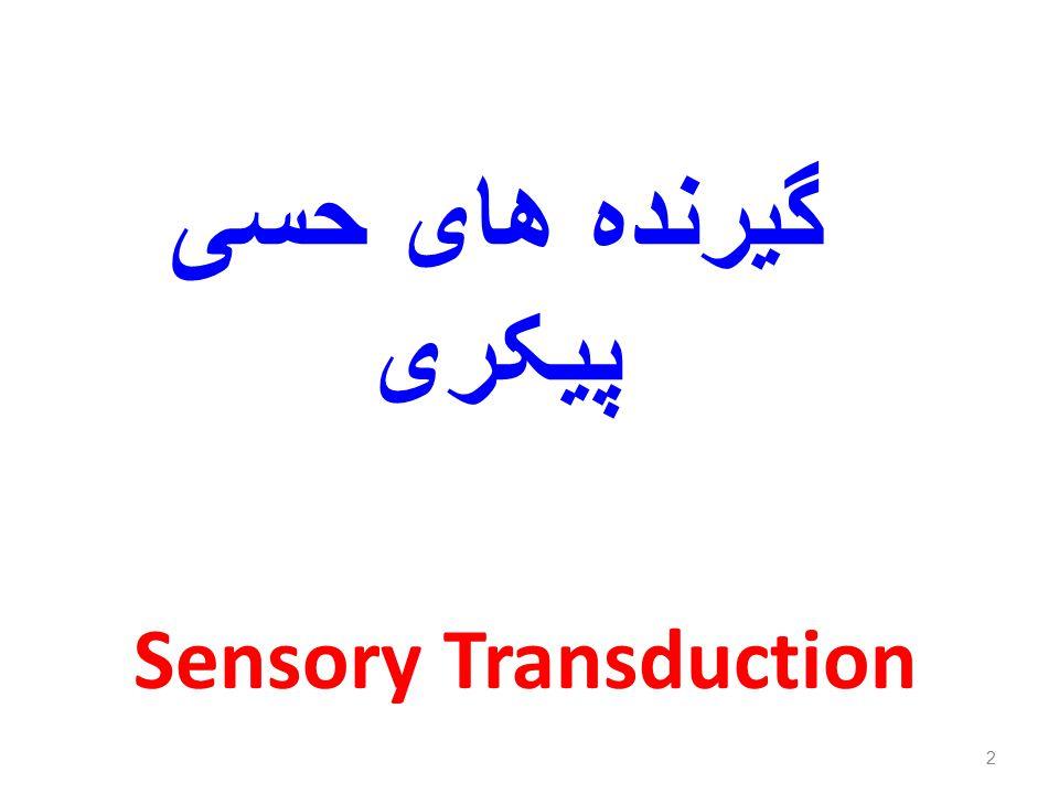 گیرنده های حسی پیکری Sensory Transduction