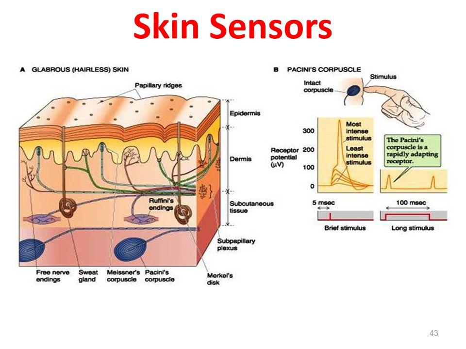 Skin Sensors 43