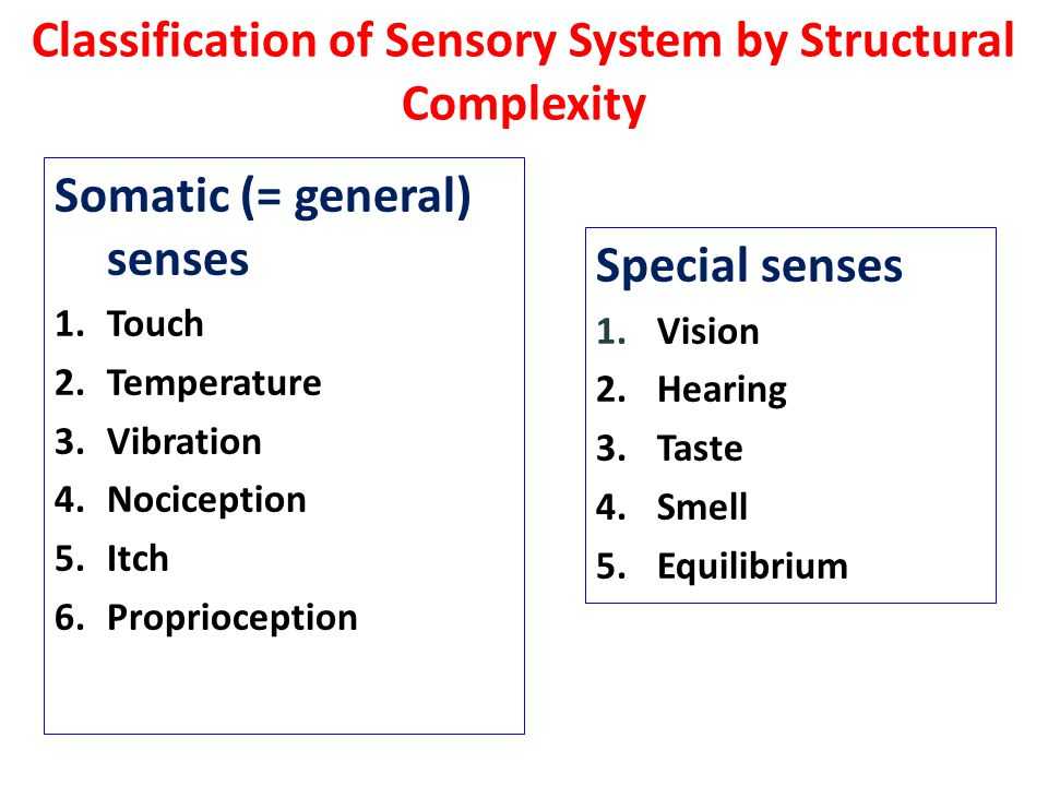 Classification of Sensory System by Structural Complexity