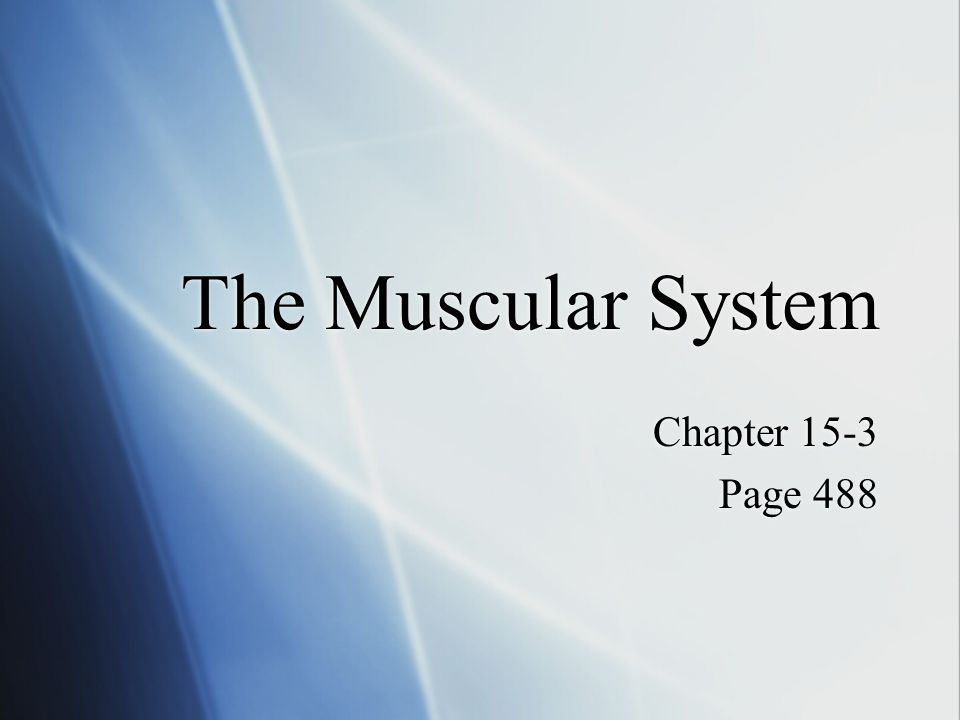 The Muscular System Chapter 15-3 Page 488