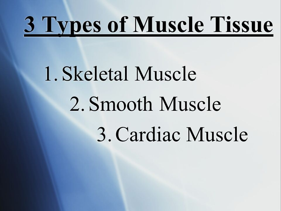 Skeletal Muscle Smooth Muscle Cardiac Muscle