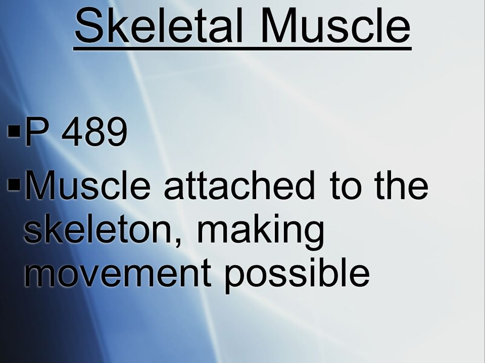 Skeletal Muscle P 489 Muscle attached to the skeleton, making movement possible