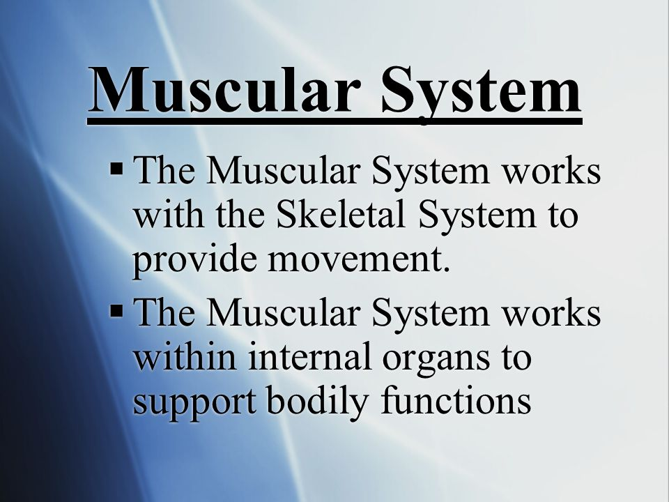 Muscular System The Muscular System works with the Skeletal System to provide movement.