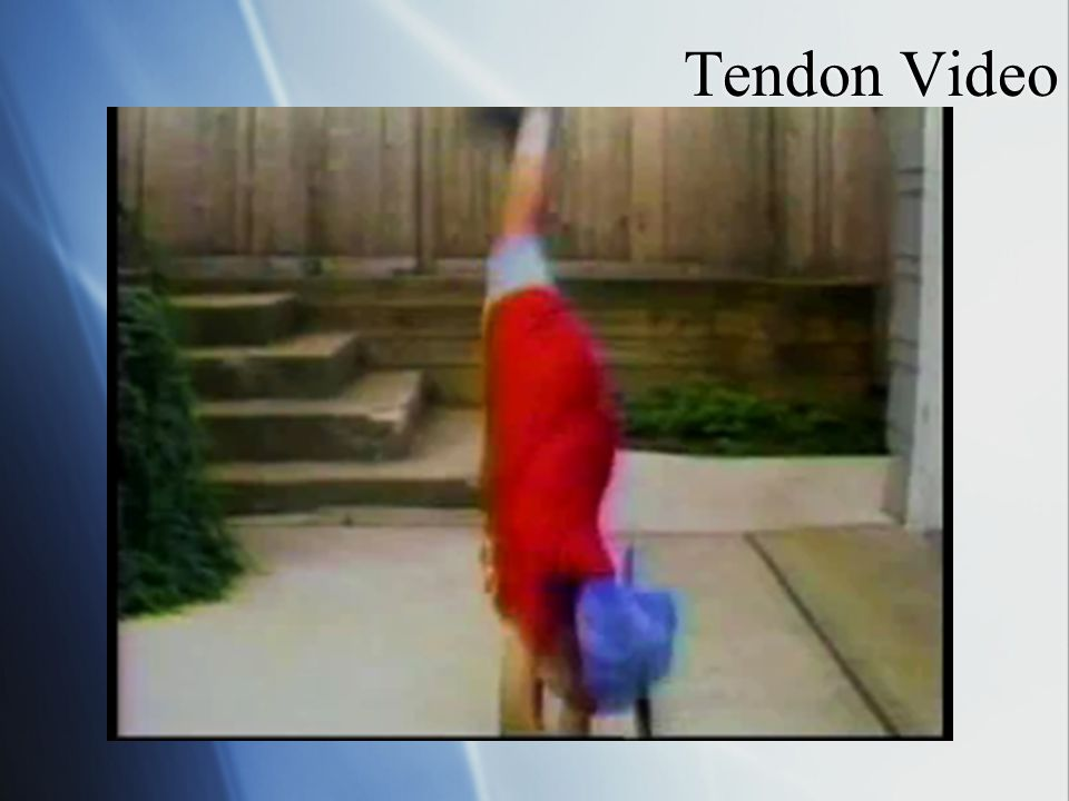 Tendon Video