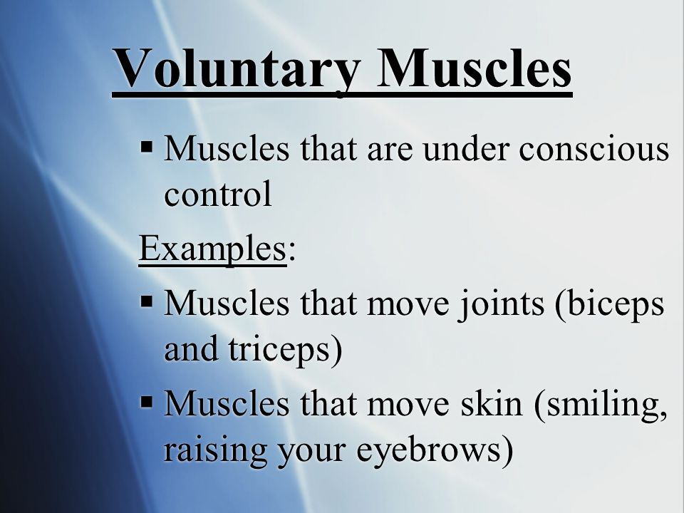 Voluntary Muscles Muscles that are under conscious control Examples: