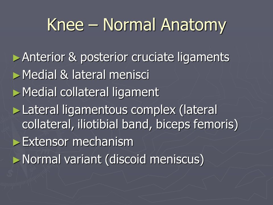 Knee – Normal Anatomy Anterior & posterior cruciate ligaments