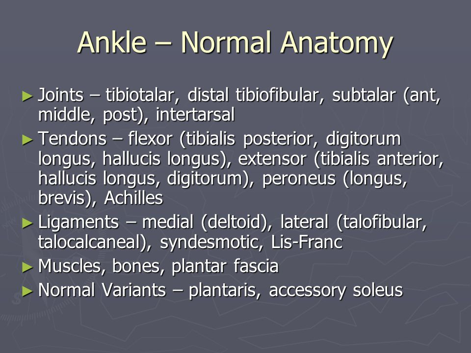Ankle – Normal Anatomy Joints – tibiotalar, distal tibiofibular, subtalar (ant, middle, post), intertarsal.