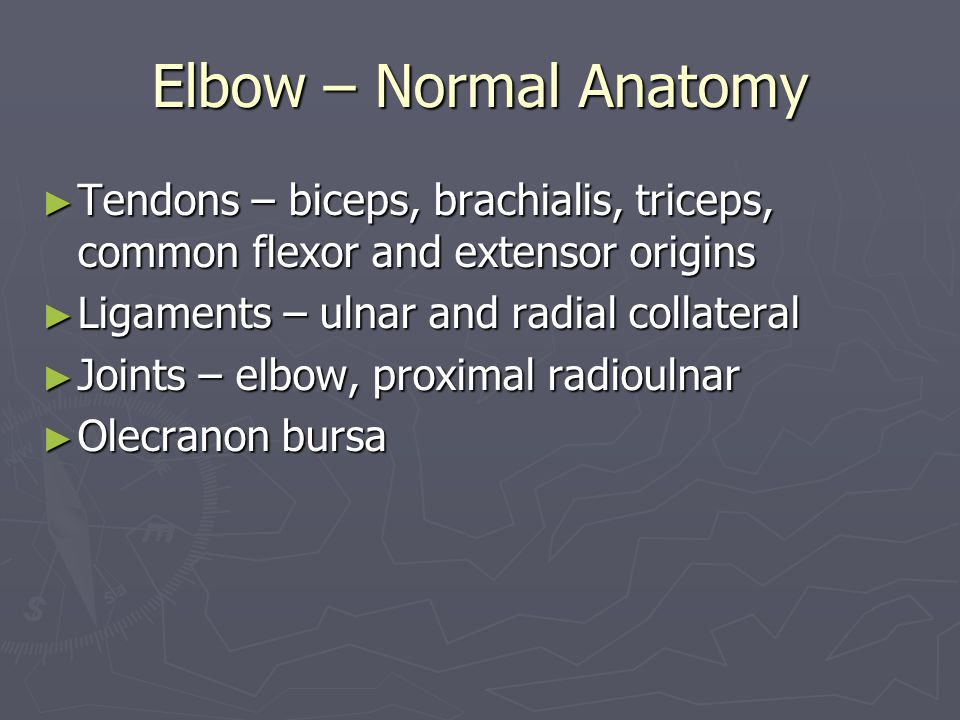 Elbow – Normal Anatomy Tendons – biceps, brachialis, triceps, common flexor and extensor origins. Ligaments – ulnar and radial collateral.