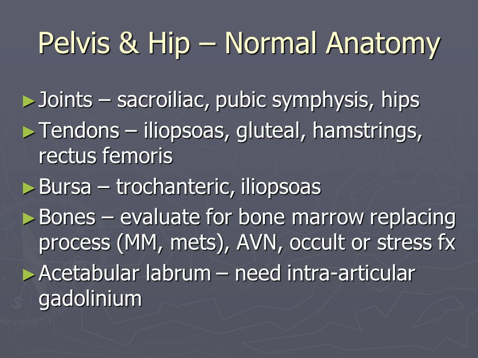 Pelvis & Hip – Normal Anatomy