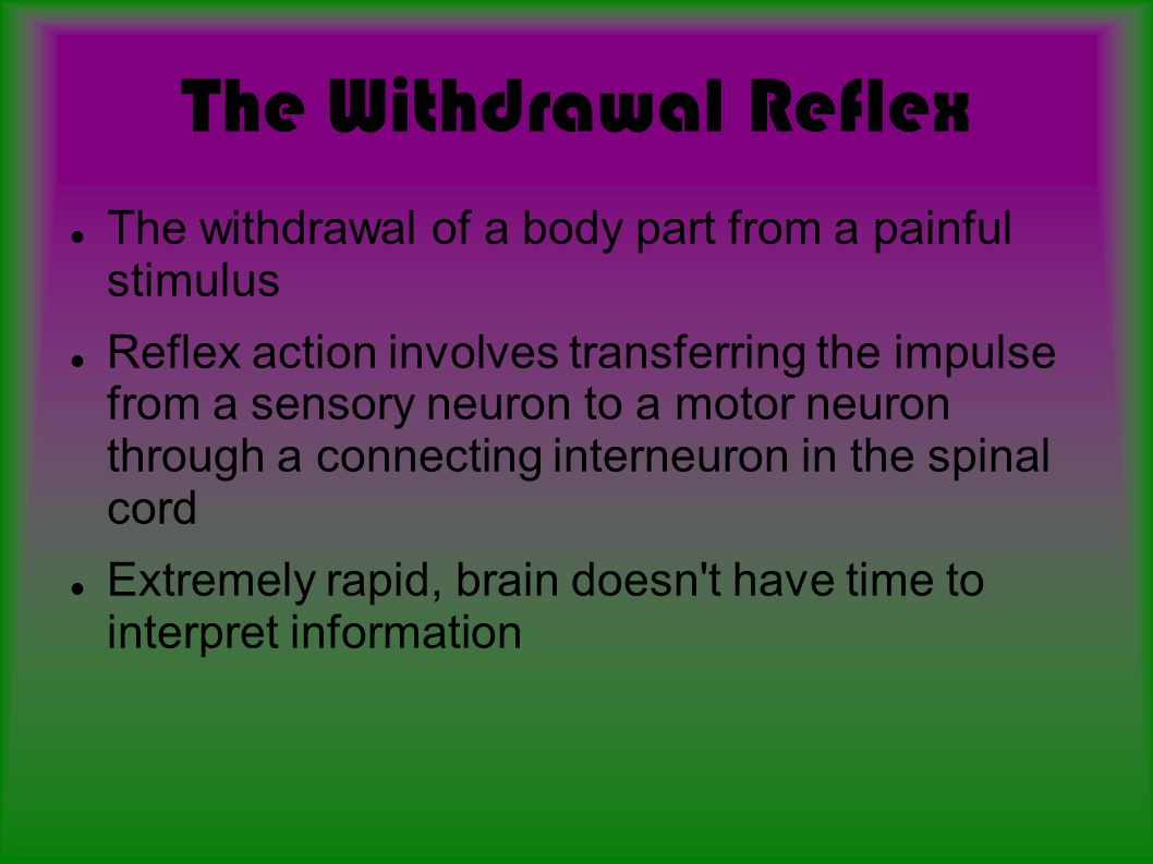 The Withdrawal Reflex The withdrawal of a body part from a painful stimulus.
