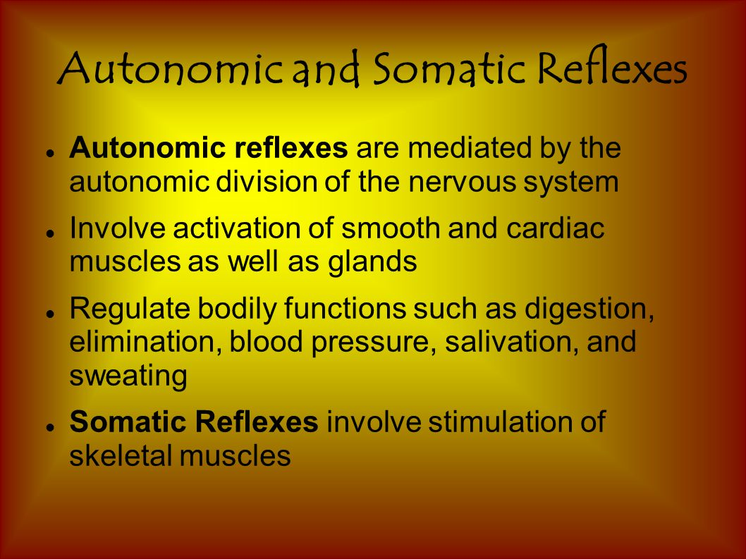 Autonomic and Somatic Reflexes