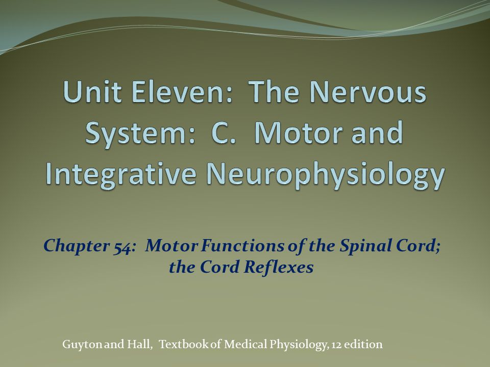 Chapter 54: Motor Functions of the Spinal Cord; the Cord Reflexes