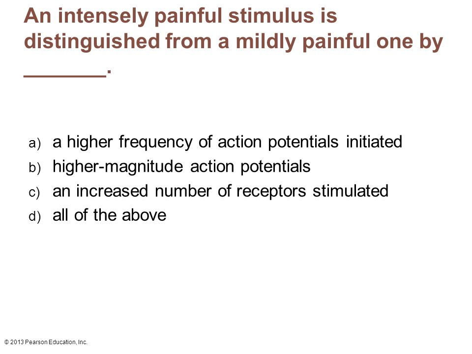 An intensely painful stimulus is distinguished from a mildly painful one by _______.