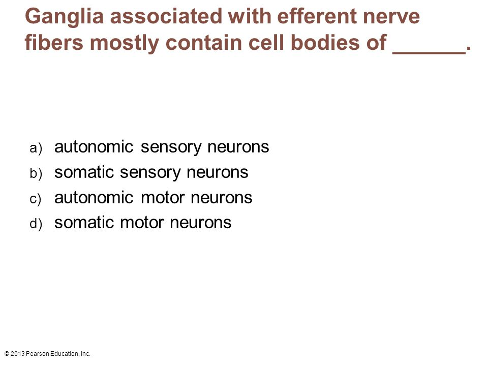 Ganglia associated with efferent nerve fibers mostly contain cell bodies of ______.
