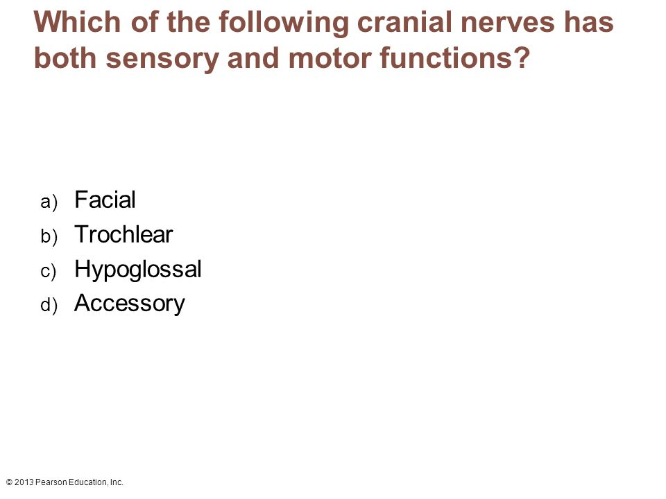 Which of the following cranial nerves has both sensory and motor functions