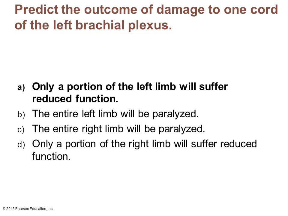 Predict the outcome of damage to one cord of the left brachial plexus.