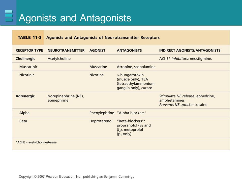 Agonists and Antagonists