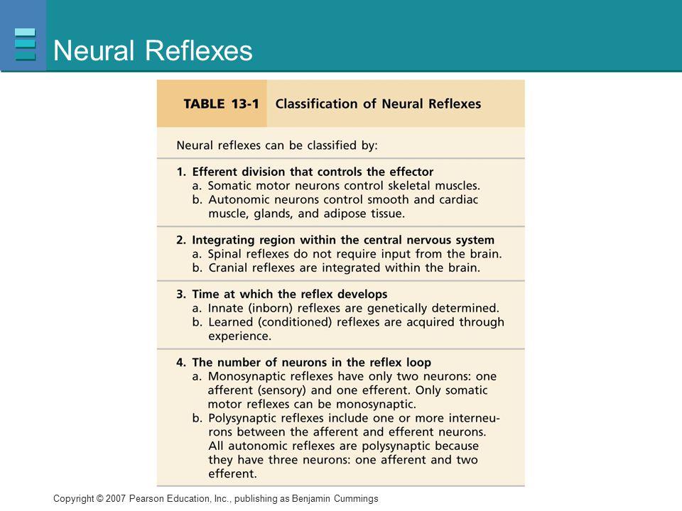 Neural Reflexes