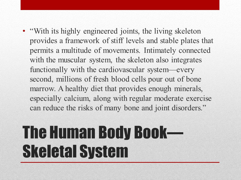The Human Body Book—Skeletal System