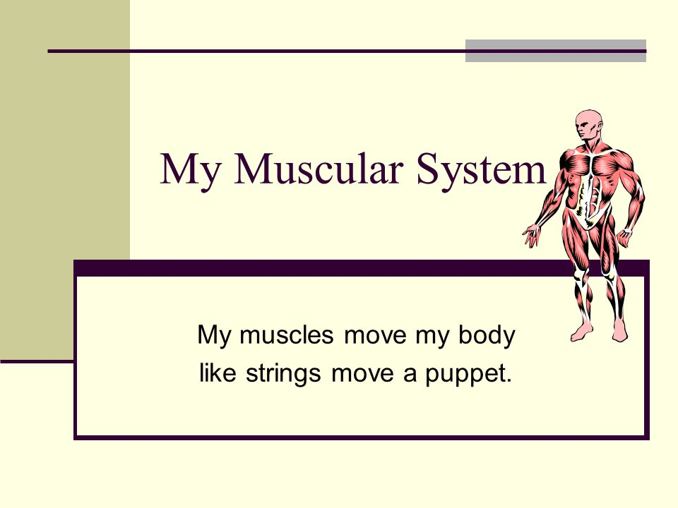 My muscles move my body like strings move a puppet.
