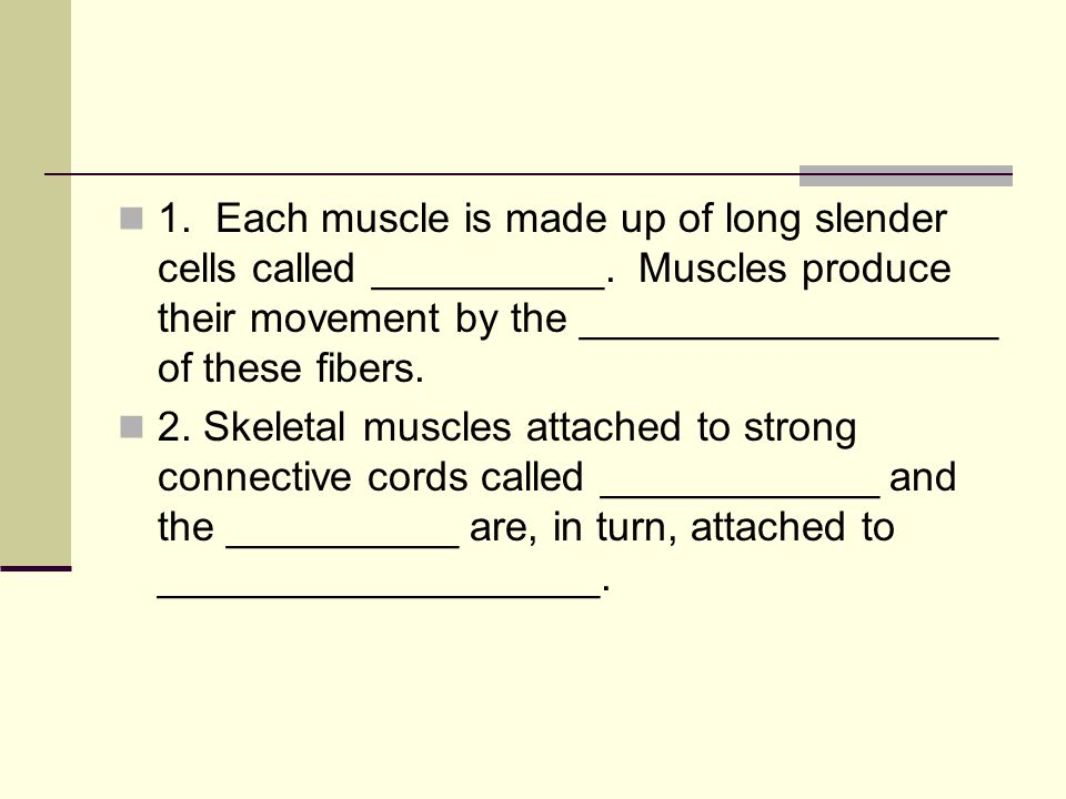 1. Each muscle is made up of long slender cells called __________