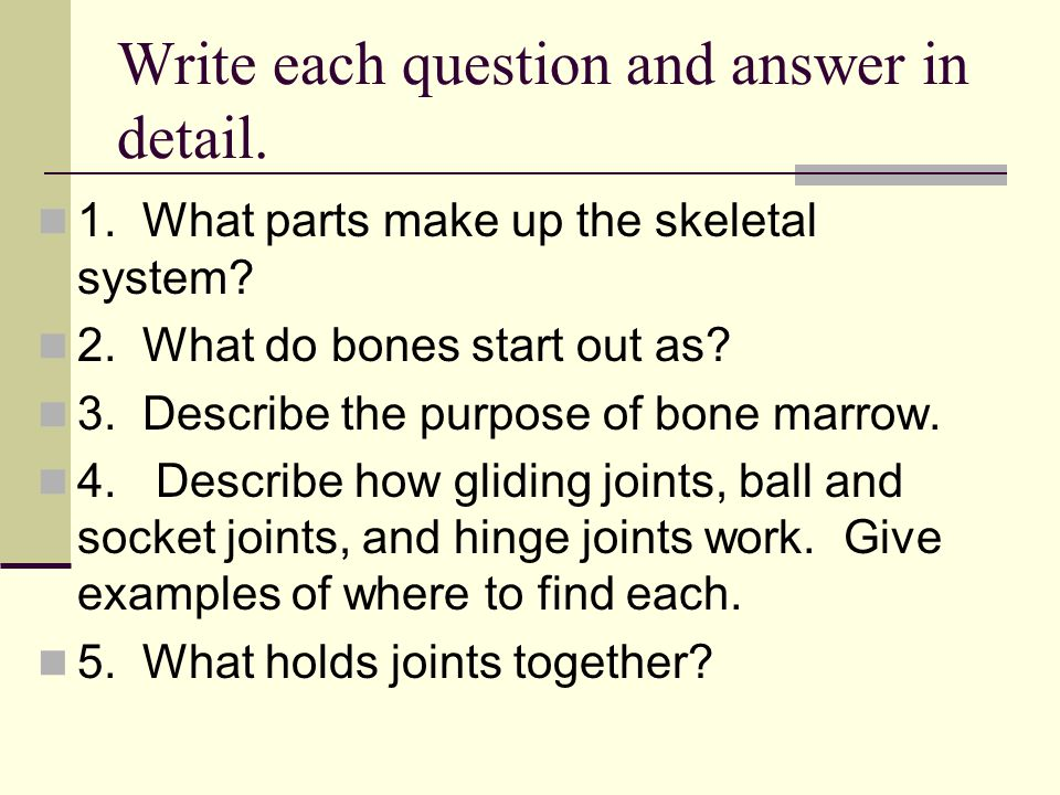 Write each question and answer in detail.