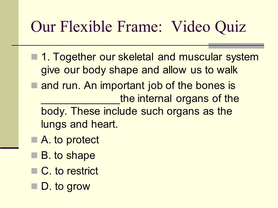 Our Flexible Frame: Video Quiz