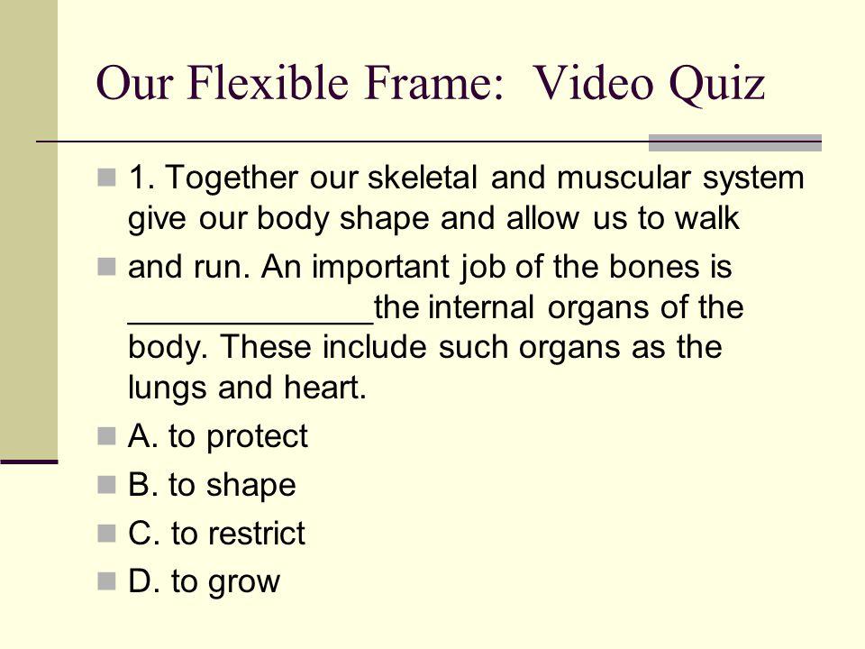 Our Flexible Frame: Video Quiz