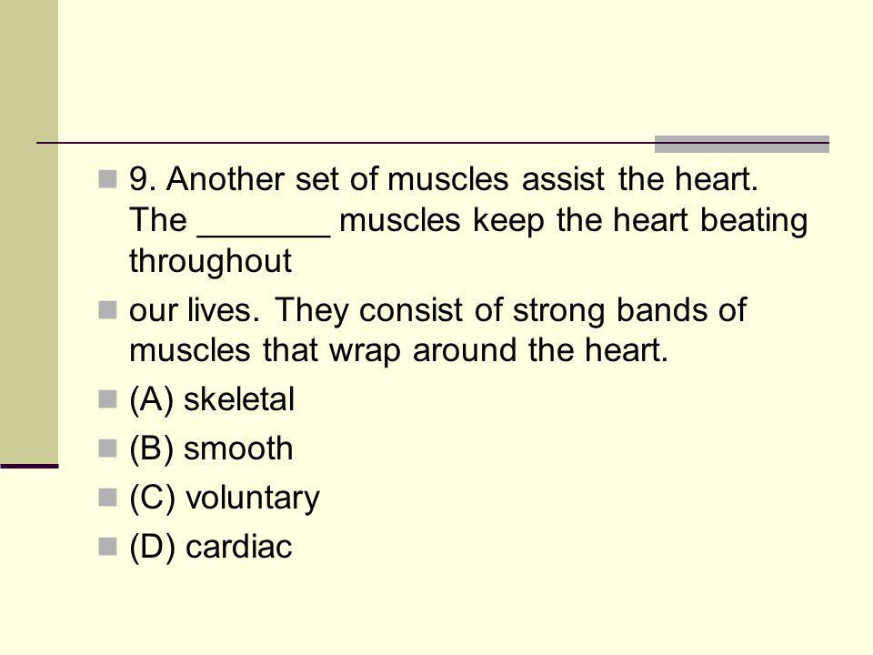 9. Another set of muscles assist the heart