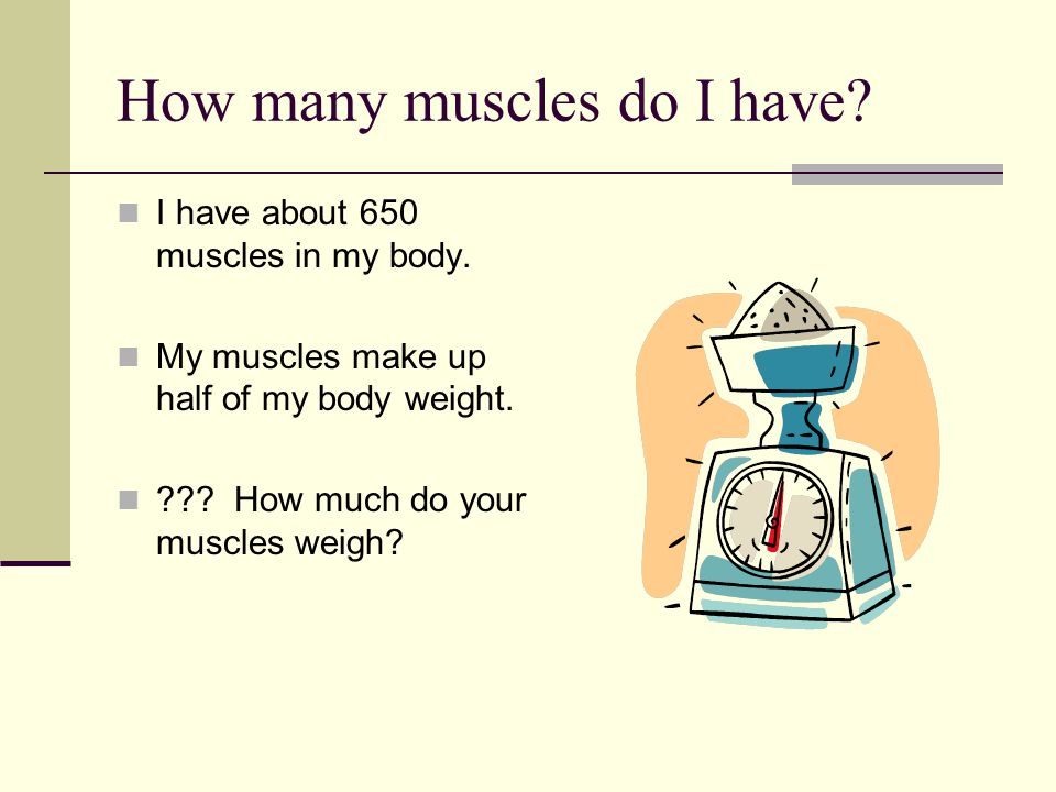 How many muscles do I have