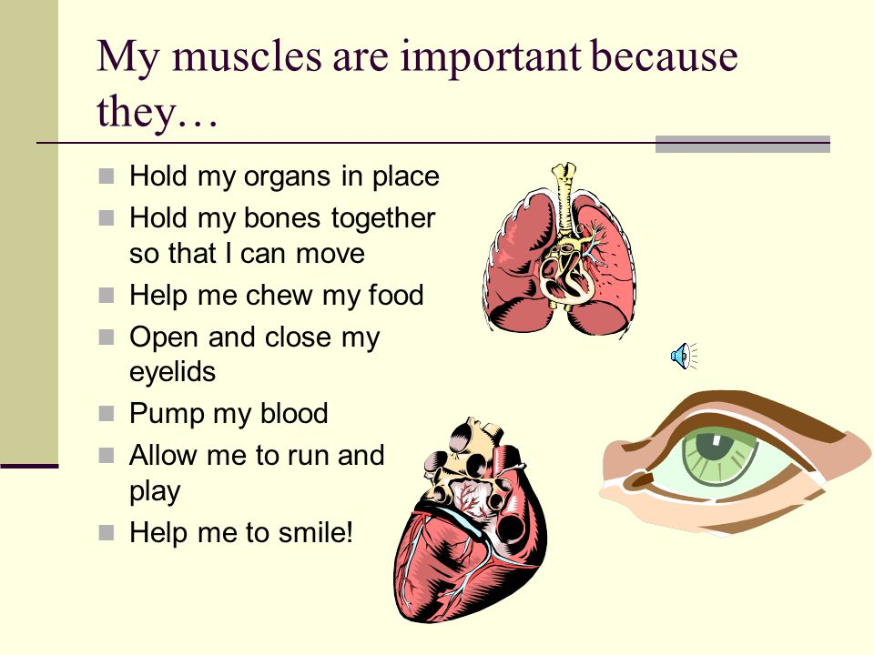 My muscles are important because they…