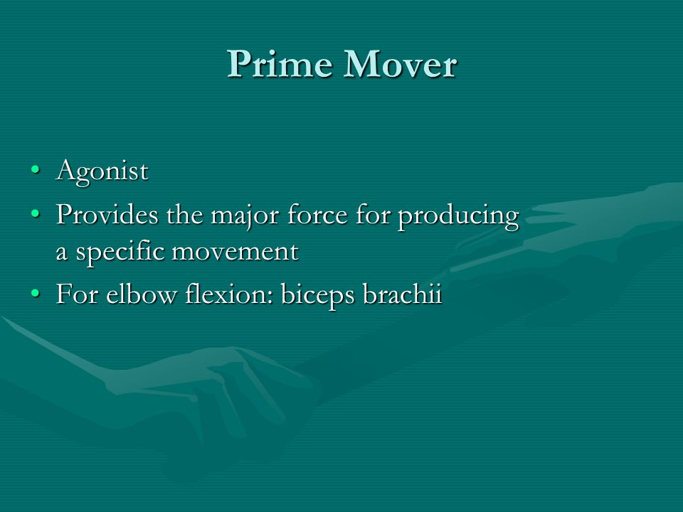 Prime Mover Agonist. Provides the major force for producing a specific movement.