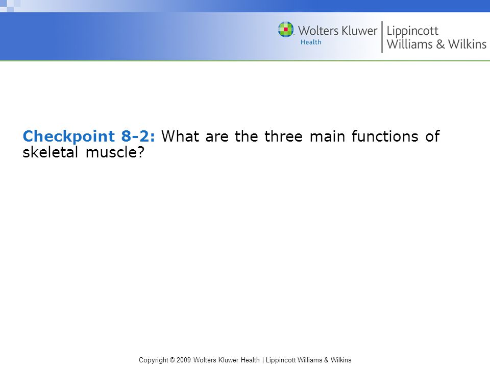 Checkpoint 8-2: What are the three main functions of skeletal muscle