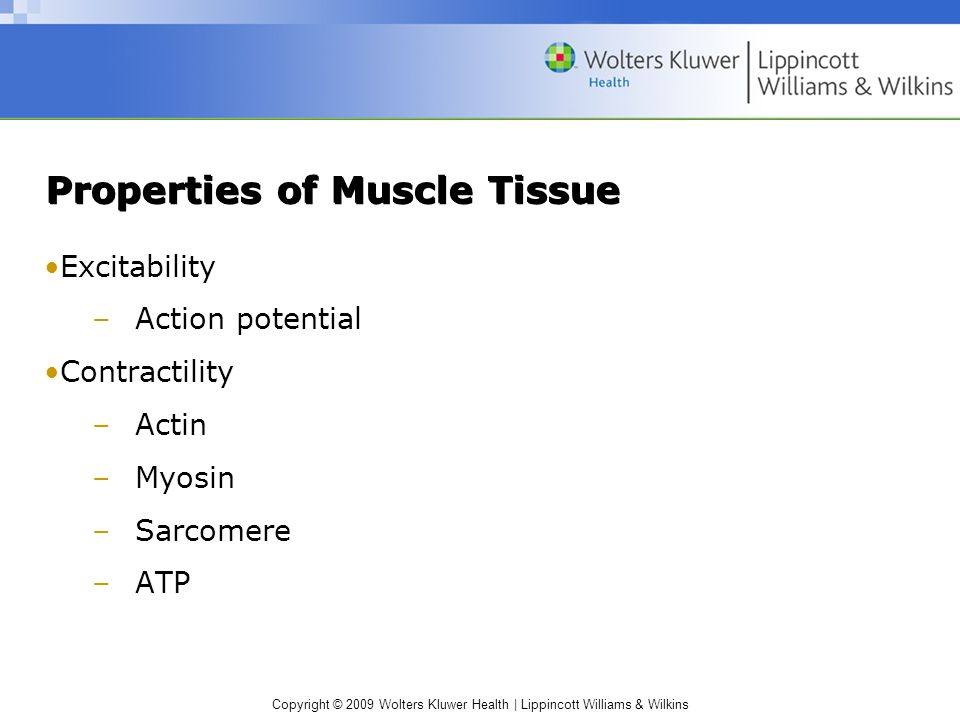 Properties of Muscle Tissue