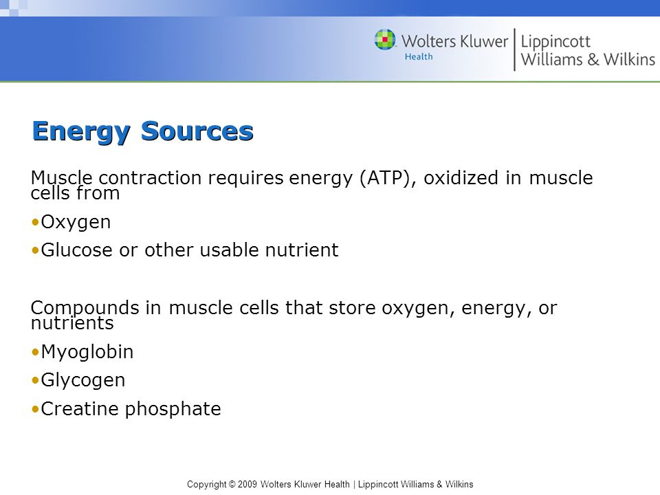 Energy Sources Muscle contraction requires energy (ATP), oxidized in muscle cells from. Oxygen. Glucose or other usable nutrient.