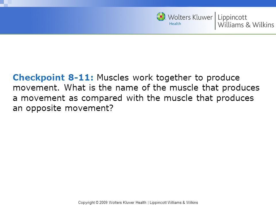 Checkpoint 8-11: Muscles work together to produce movement