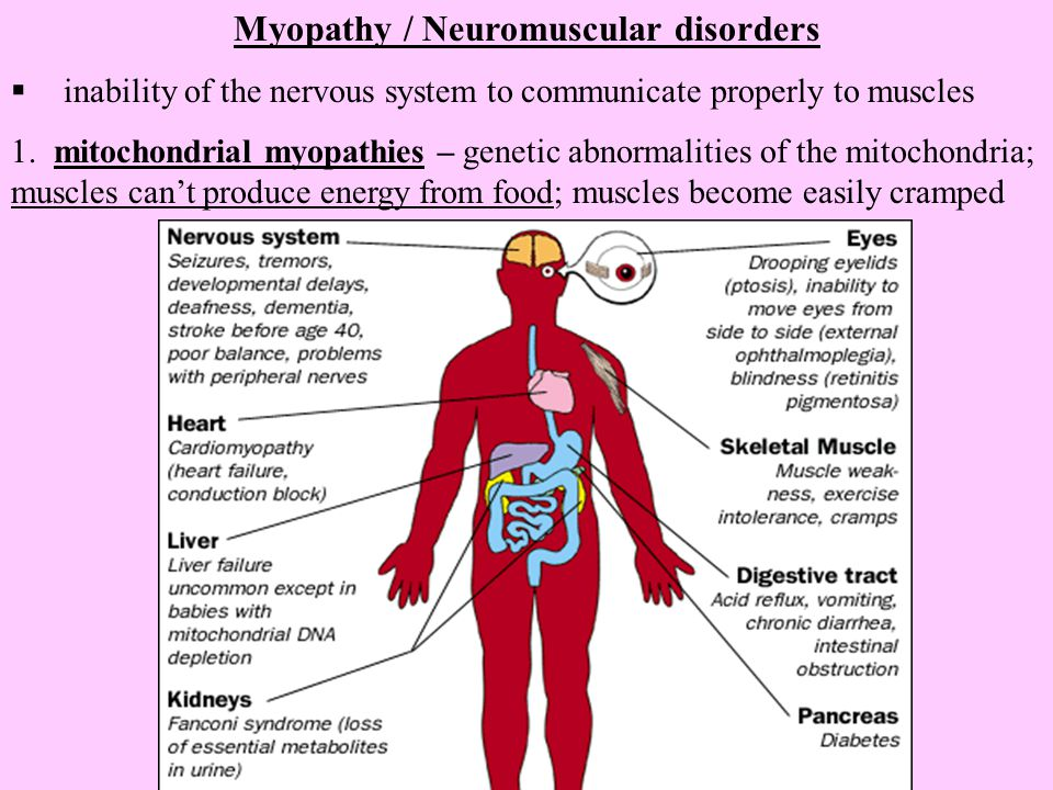Myopathy / Neuromuscular disorders