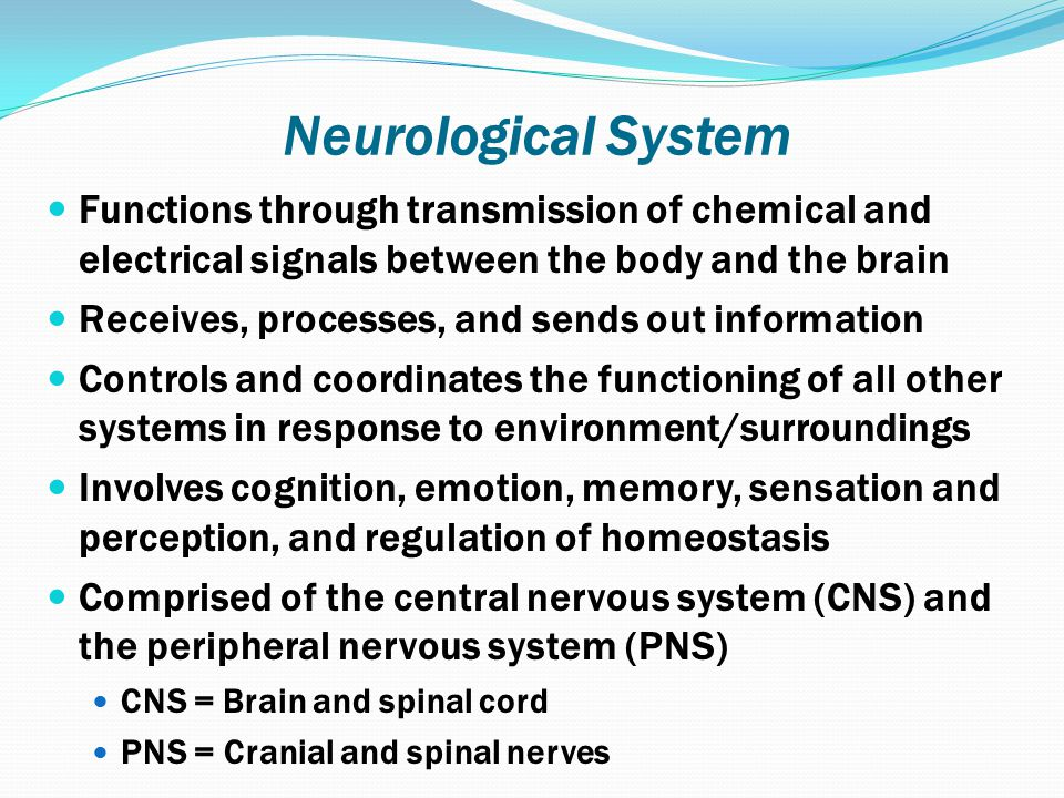 Neurological System Functions through transmission of chemical and electrical signals between the body and the brain.