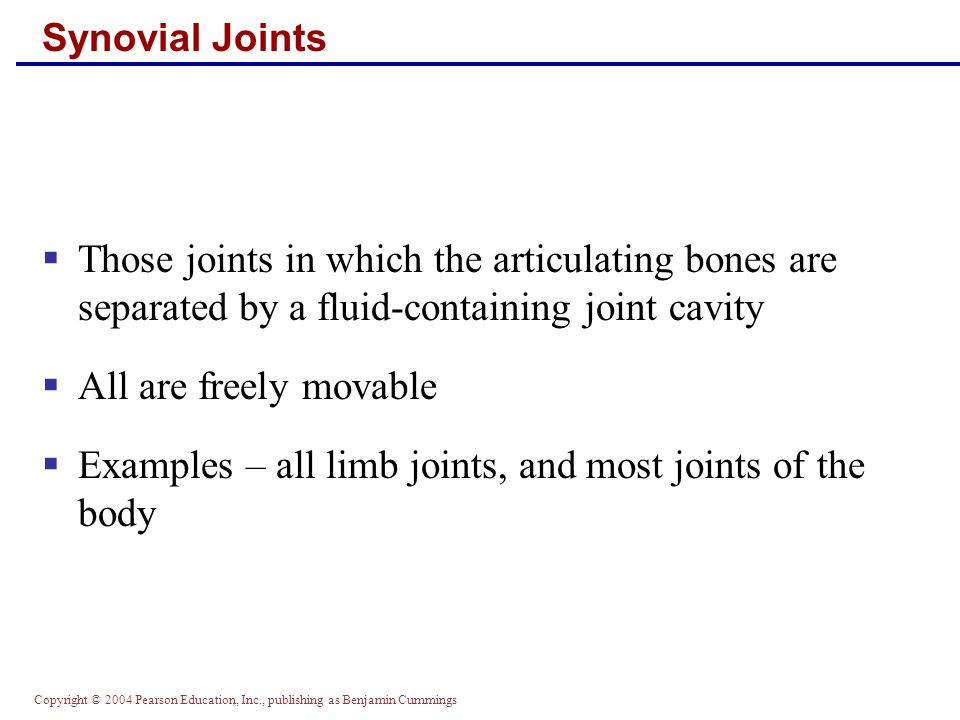 Examples – all limb joints, and most joints of the body
