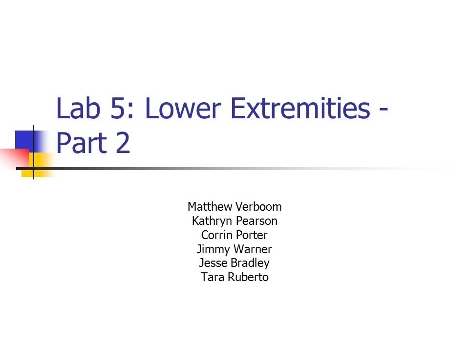 Lab 5: Lower Extremities - Part 2