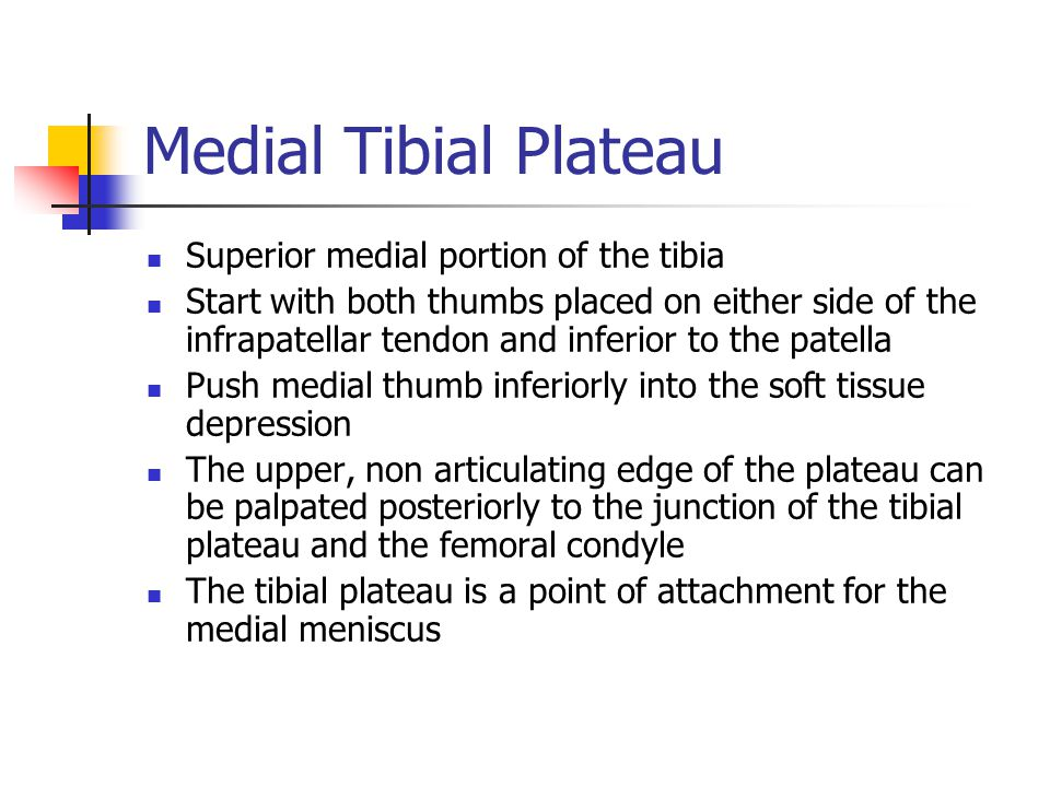 Medial Tibial Plateau Superior medial portion of the tibia
