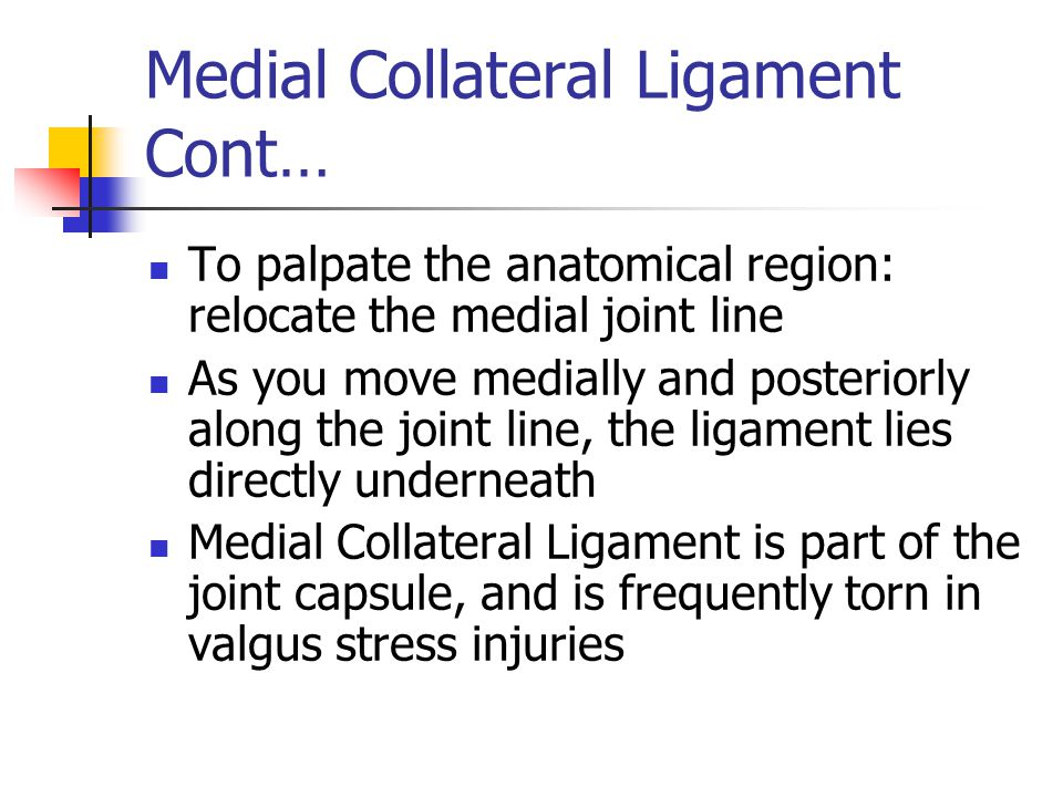 Medial Collateral Ligament Cont…