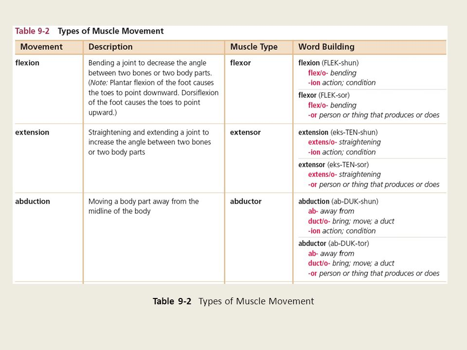 Table 9-2 Types of Muscle Movement